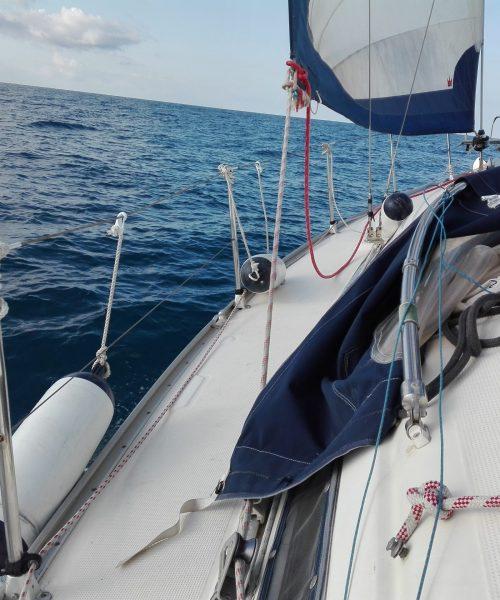 Adric Navegando 1